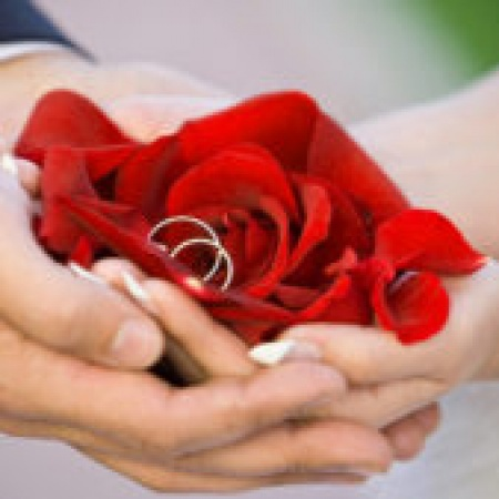 Cute Baby Boys Girls Nice Dp For Whatsapp Profile Images Pics Pictures With Red Rose Mirchistatus