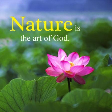 Beautiful Nature Message Mirchistatus