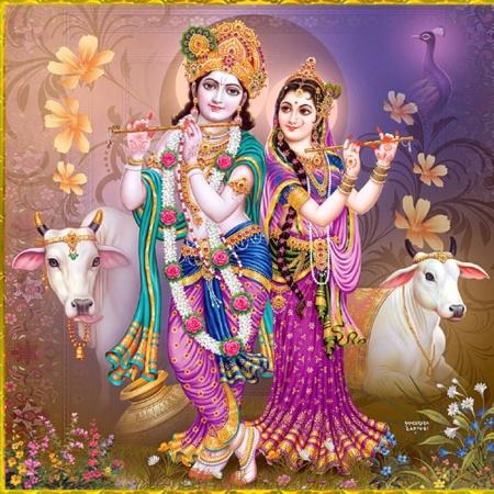 lord krishna dp